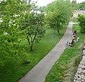Donauufer - panoramio (1).jpg