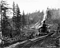 Donkey engine beside log holding pond, with logging camp 3 in distance, Wynooche Timber Company, near Montesano, ca 1921 (KINSEY 1614).jpeg