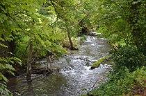 Druyes (rivière) à Surgy.JPG
