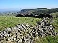 Dry Stone Fence - geograph.org.uk - 2310398.jpg