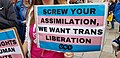 Dublin Trans Pride 2018 9.jpg