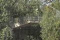 EH1323695 Snowdon Aviary, London Zoo 02.jpg