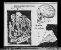 ETH-BIB-Grimaldi, Grotte des enfants-Dia 247-Z-00400.tif