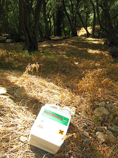 File:Empty Glyphosate (Herbolex) container discarded in Corfu olive grove.jpg