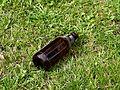 Empty beer bottle on grass.jpg