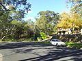 Engadine NSW 2233, Australia - panoramio (152).jpg