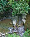 Euclid Creek b 7-17-11.jpg
