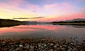 Evening at Lake Tekapo. NZ (8431162915).jpg