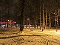 Evening in the central park. January 2014. - Вечерний парк зимой. Январь 2014. - panoramio.jpg