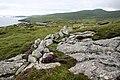 Exposed rock at Rubha an Droma - geograph.org.uk - 1032897.jpg