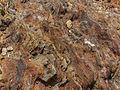 Exposed sedimentation of soil and rock.jpg