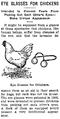 Eye Glasses For Chickens.png