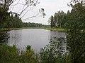 Ezers aiz Ogres meža tehnikuma - panoramio.jpg