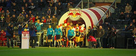 "FC Red Bull Salzburg SCR Altach (März 2015)"" 41.JPG"