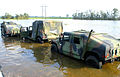 FEMA - 16130 - Photograph by Win Henderson taken on 09-25-2005 in Louisiana.jpg