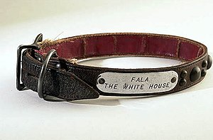"Fala (dog) - Fala's silver-and-leather collar, engraved with the words ""Fala, the White House"""