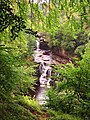 Falls of Clyde (29399292593).jpg