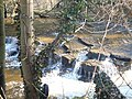 Falls on the Devil's Water - geograph.org.uk - 1736773.jpg