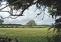 Farmland north of Pen-y-garnedd - geograph.org.uk - 951653.jpg
