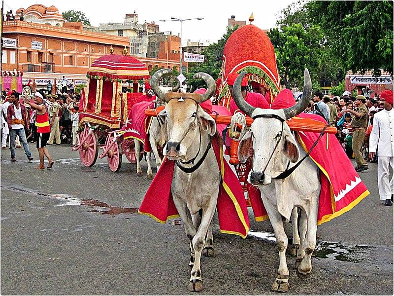 File:Festival of teej in India. - panoramio (2).jpg