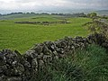 Field near Bogue - geograph.org.uk - 267194.jpg