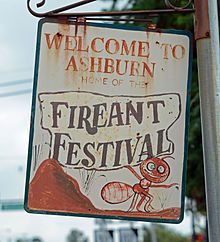 Fire Ant Festival Sign