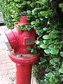 Fire hidrant in Petah-Tikva 05.jpg