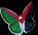 Flag-Butterfly of Jordan.png