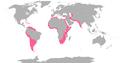 Flamingo range.png