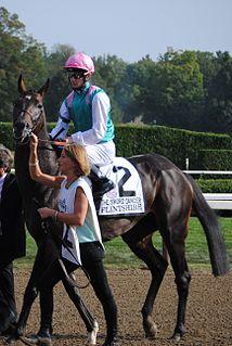 Flintshire (horse) British-bred Thoroughbred racehorse