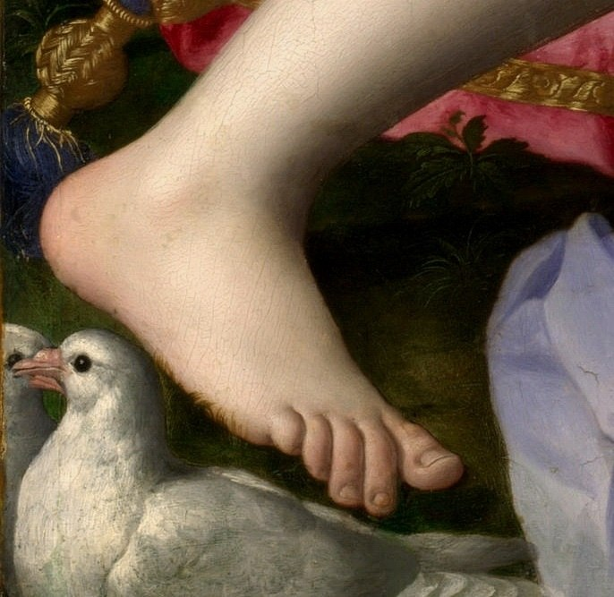 Foot detail from Venus, Cupid, Folly and Time by Agnolo Bronzino