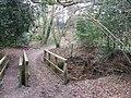 Footbridge near East End - geograph.org.uk - 1228272.jpg