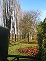 Footpath beyond the church by line of trees - geograph.org.uk - 1070766.jpg