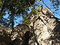 Fotóséta bp margit-sziget 252 ferences romok.JPG
