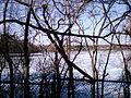 Fresh Pond, Cambridge, MA 06.jpg
