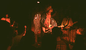 The Frogs (band) - The Frogs performing in Austin, Texas, in 2011
