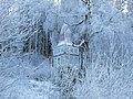 Frost (2).jpg
