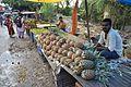 Fruit Stalls - Canning Bazaar - South 24 Parganas 2016-07-10 5091.JPG