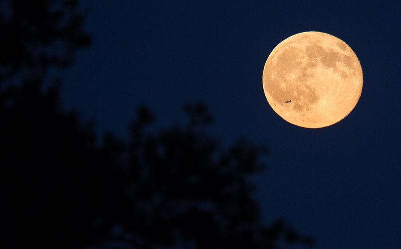 File:Full Moon (201507310004HQ).jpg