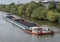 GMS Danube Lion 0258.jpg