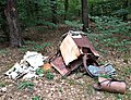 Garbage in a German forest (Furstenwalde).jpg