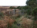 Gate on bridleway, Sheffield Moor - geograph.org.uk - 622275.jpg