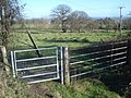 Gates at Glenberrow - geograph.org.uk - 733271.jpg