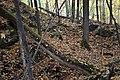Gatineau Park, October 2018 (64) (43514872920).jpg