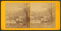 General view of Brattleboro, Vermont, by D. A. Henry.png
