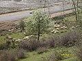 Gilan Province, Rasht - Astara Rd, Iran - panoramio.jpg