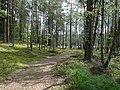 Gmina Piecki, Poland - panoramio (93).jpg