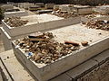 Graves of First and Second Dushinsky Rebbes.jpg