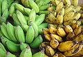 Green yellow bananas dsc07775.jpg