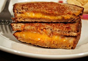 Cheese sandwich - Cross section of a grilled cheese sandwich